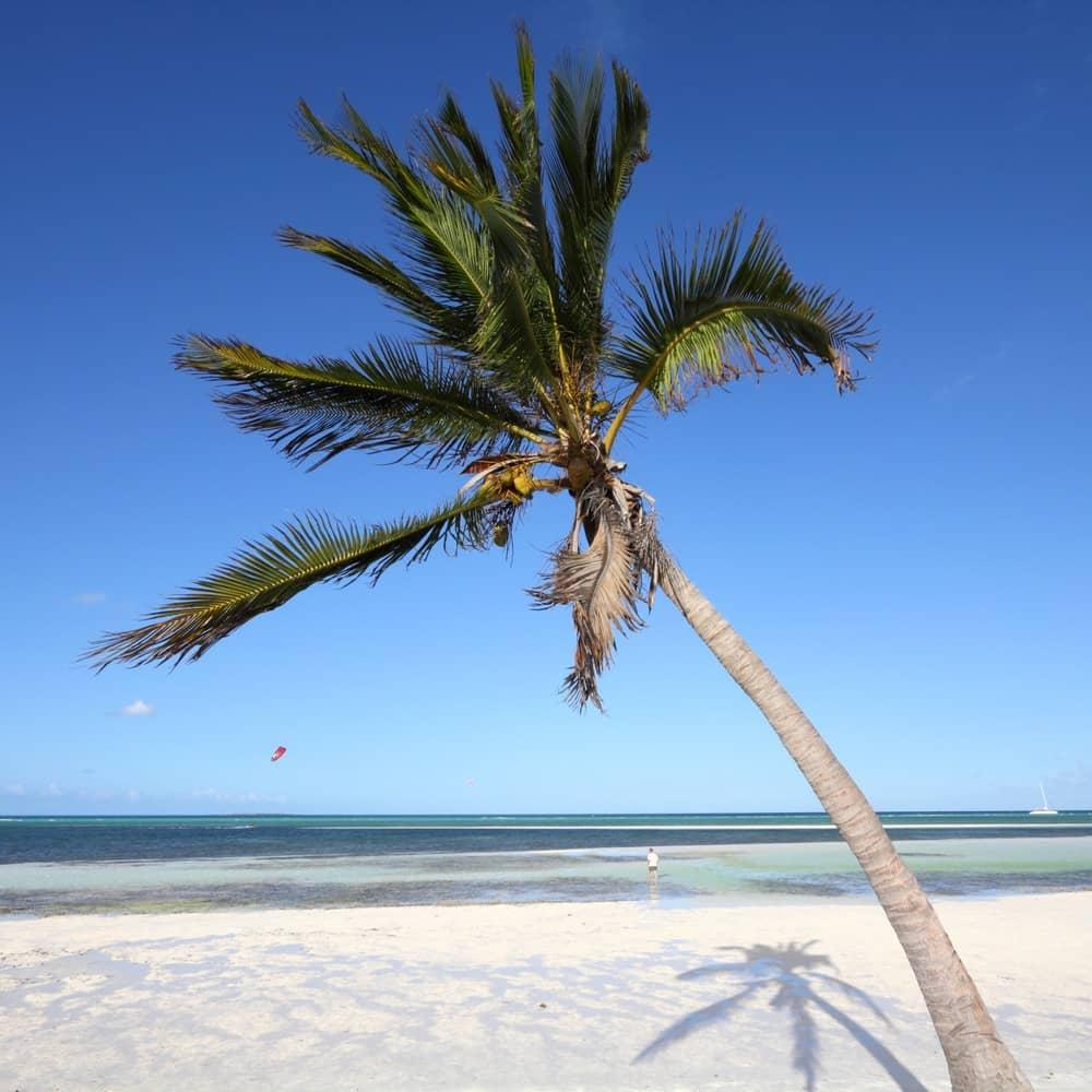 The Beach at Melia Cayo Guillermo Cuba - YouTube  |Beach Cayo Guillermo Cuba