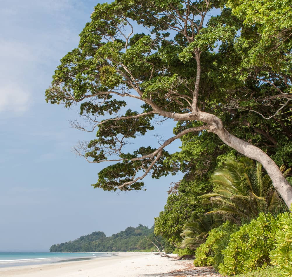 Havelock Island: Beach Weather In Radhanagar Beach, Havelock Island, India