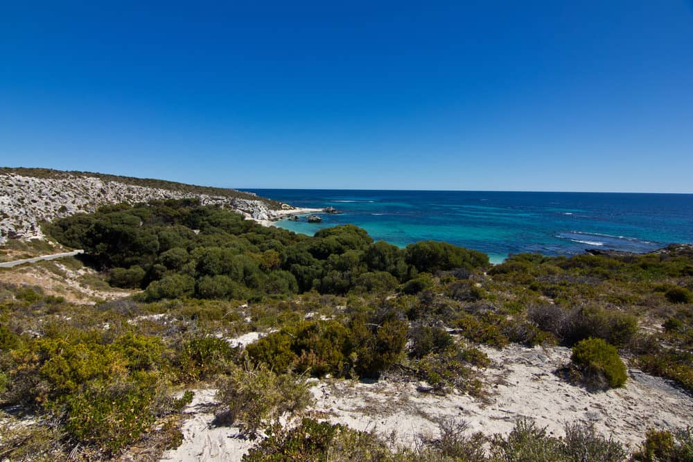Rottnest Island Australia: Beach Weather In Rottnest Island, Perth, Australia In July