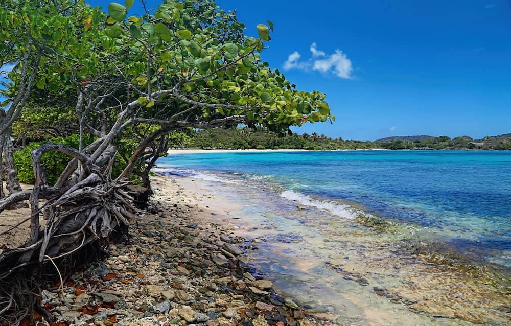 Weather In St John Virgin Islands In June